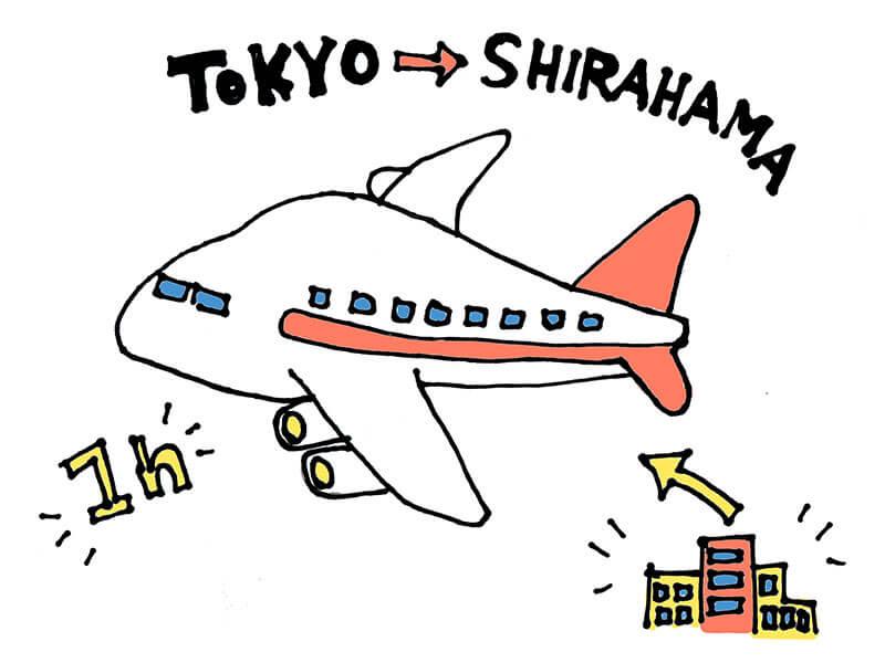 東京から飛行機でひとっ飛び